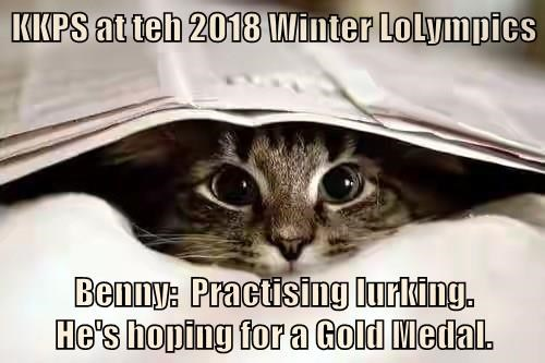 Kkps At Teh 2018 Winter Lolympics Lolcats Lol Cat Memes