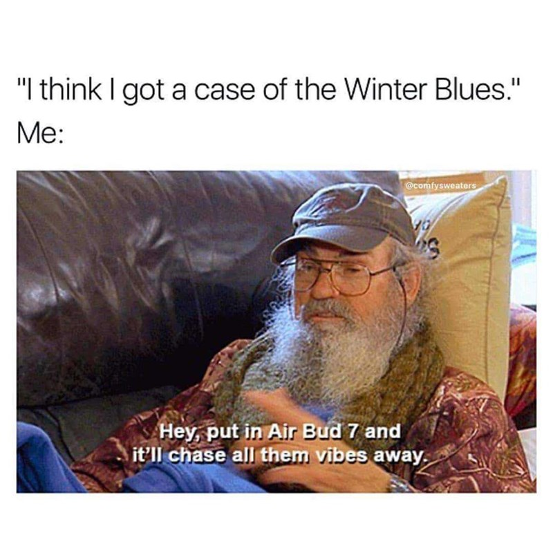 "Text - ""I think I got a case of the Winter Blues."" Me: @comfysweaters Hey, put in Air Bud 7 and it'll chase all them vibes away"