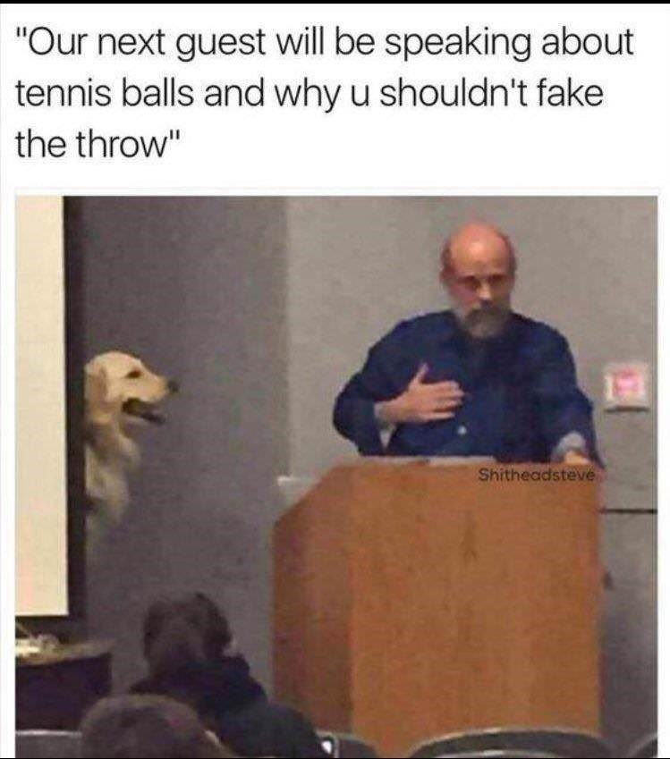 "Lecture - ""Our next guest will be speaking about tennis balls and why u shouldn't fake the throw"" Shitheadsteve"