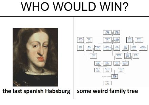 dank memes - Face - WHO WOULD WIN? he - ww. Braic Hems htn the last spanish Habsburg some weird family tree