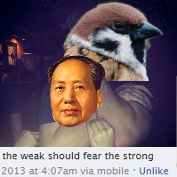 dank memes - Photo caption - the weak should fear the strong 2013 at 4:07am via mobile Unlike