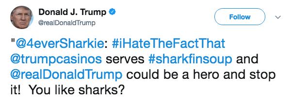 """Text - Donald J. Trump @realDonald Trump Follow """"@4everSharkie: #iHateTheFactThat @trumpcasinos serves #sharkfinsoup and @realDonaldTrump could be a hero and stop it! You like sharks?"""