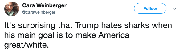 Text - Cara Weinberger Follow @caraweinberger It's surprising that Trump hates sharks when his main goal is to make America great/white.