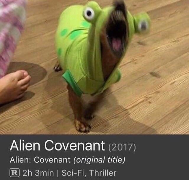 Photo caption - Alien Covenant (2017) Alien: Covenant (original title) R 2h 3min | Sci-Fi, Thriller