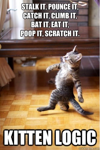 Cat - STALKIT, POUNCE IT, CATCH IT, CLIMBIT, BAT IT, EAT IT, POOP IT, SCRATCH IT. KITTEN LOGIC auickmeme.com