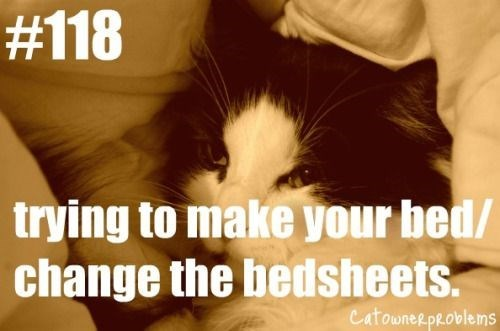 Photo caption - #118 trying to make your bed/ change the bedsheets. CatowneRpRoblems