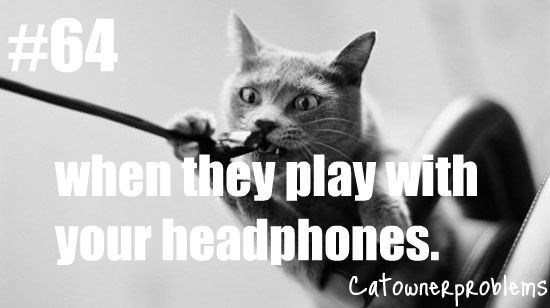 Cat - #64 when they playwith your headphones. CatowneRpROvlems