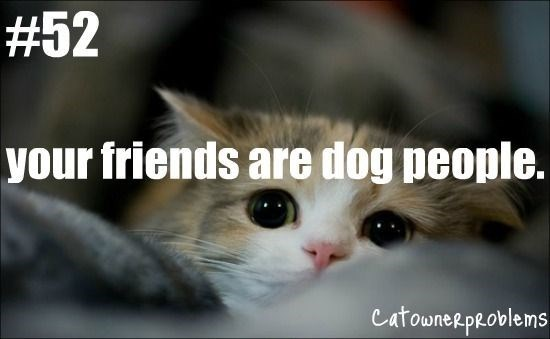 Cat - #52 your friends are dog people. CatowneRpROblems