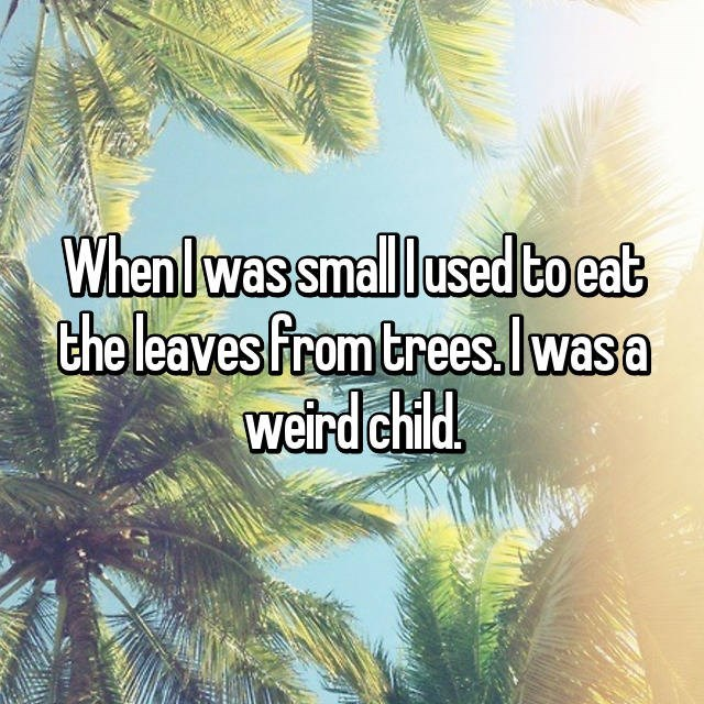 Vegetation - Whenlwas small lused to eat the leaves from trees.lwasa weird child.