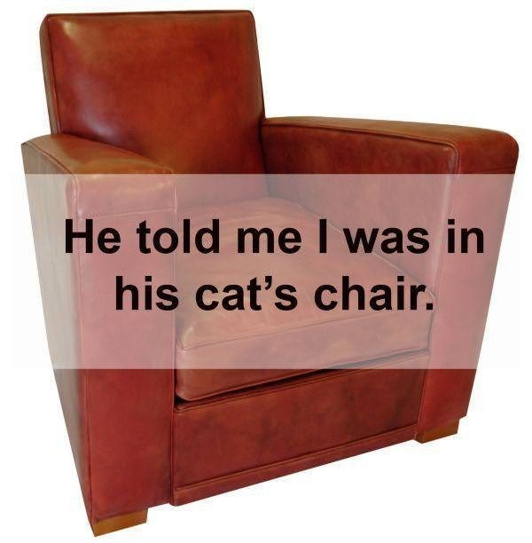 Club chair - He told me I was in his cat's chair.