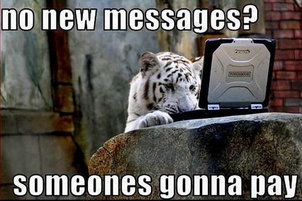 Tiger Meme looking at a laptop