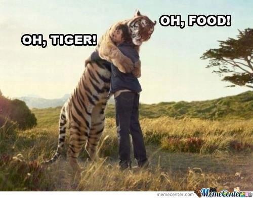 Tiger Meme hugging a human