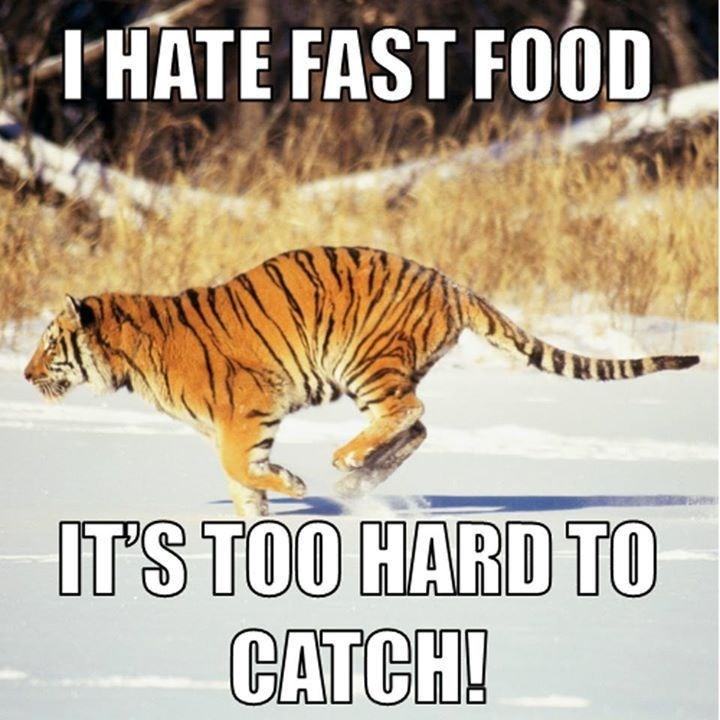 Tiger Meme running after fast food