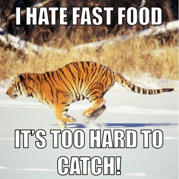 Tiger Meme running after fast food