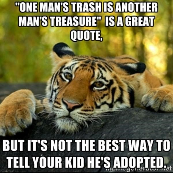 Tiger Meme telling what's not the best way to tell your kid that they're adopted