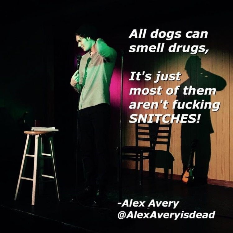 Text - All dogs can smell drugs, It's just most of them aren't fucking SNITCHES! -Alex Avery @AlexAveryisdead