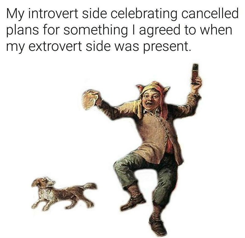 Funny meme about being an introvert and being happy when people cancel on you.