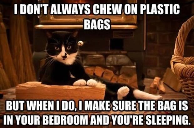Photo caption - IDON'T ALWAYS CHEW ON PLASTIC BAGS BUT WHENI DO,IMAKE SURE THE BAG IS IN YOUR BEDROOM AND YOU'RE SLEEPING