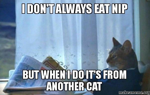 Photo caption - IDON'TALWAYS EAT NIP BUT WHEN I DOIT'S FROM ANOTHER CAT makeameme.org