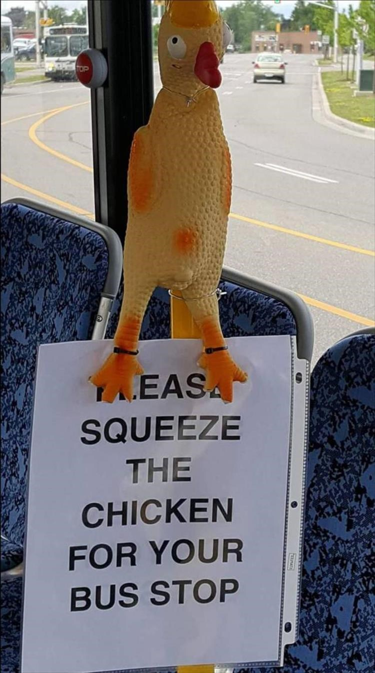 Sign - YEASA SQUEEZE THE CHICKEN FOR YOUR BUS STOP