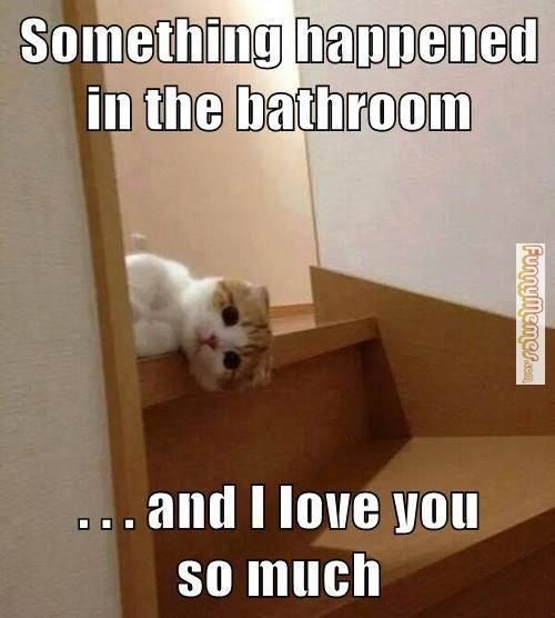 Photo caption - Something happened in the bathroom ...and I love you so much