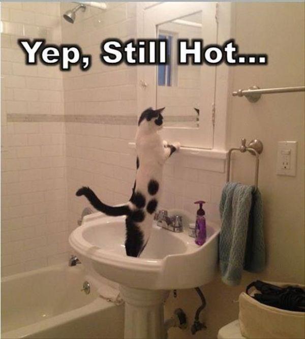 Bathroom - Yep, Still Hot...