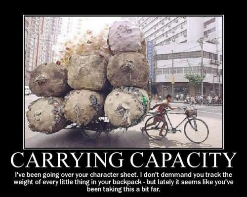 dd meme about carrying too many items with pic of person carrying huge logs on a bicycle