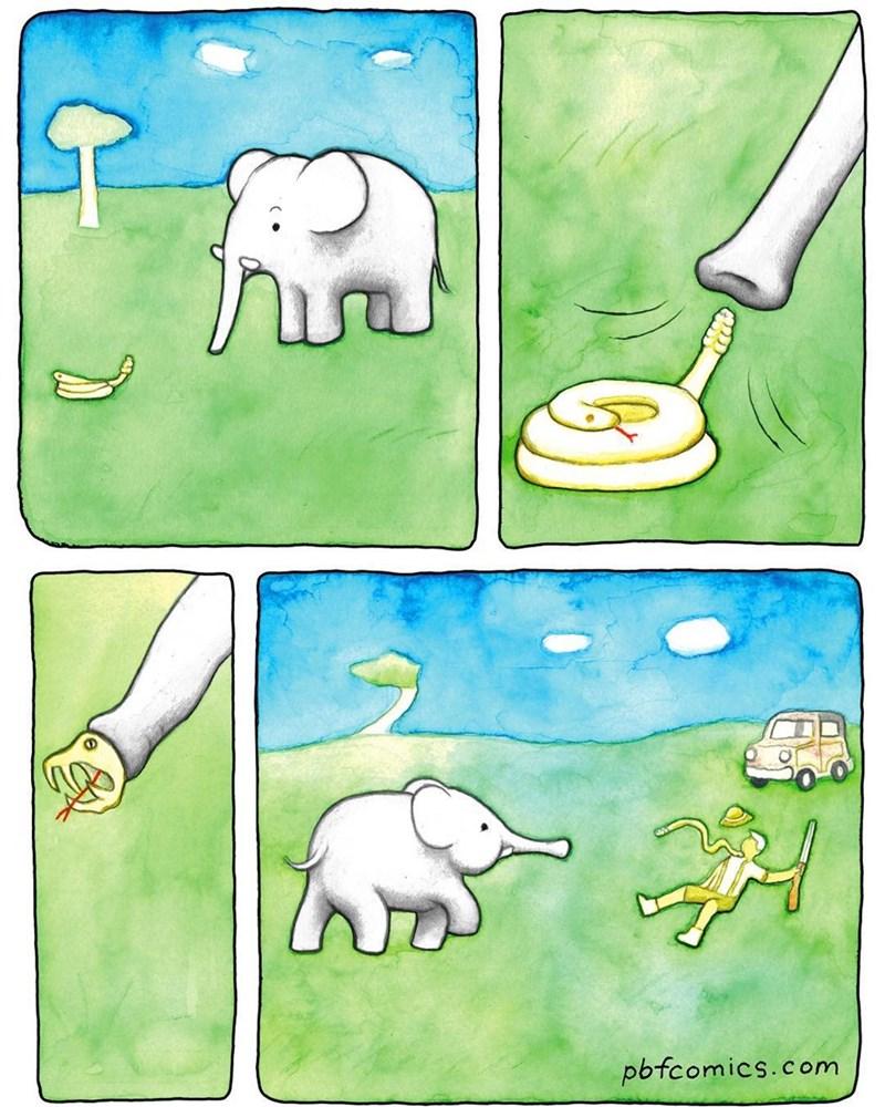 cuando un elefante usa su trompa para atacar a su atacante