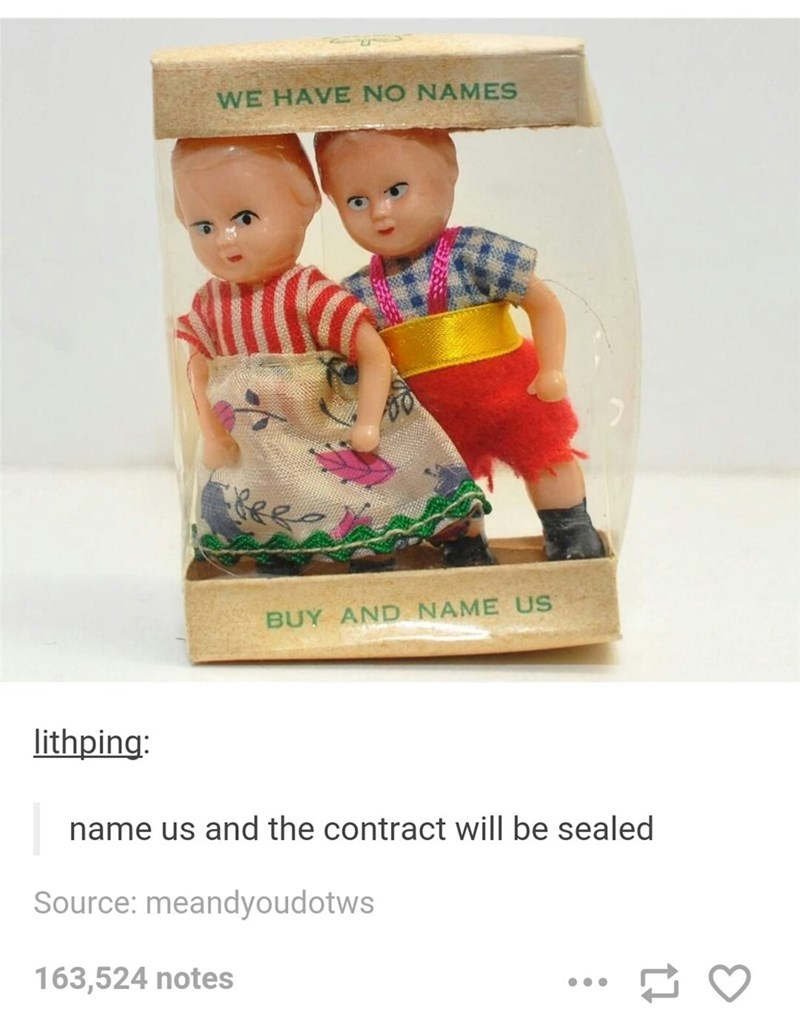 meme - Text - WE HAVE NO NAMES es BUY AND NAME US lithping: name us and the contract will be sealed Source: meandyoudotws 163,524 notes
