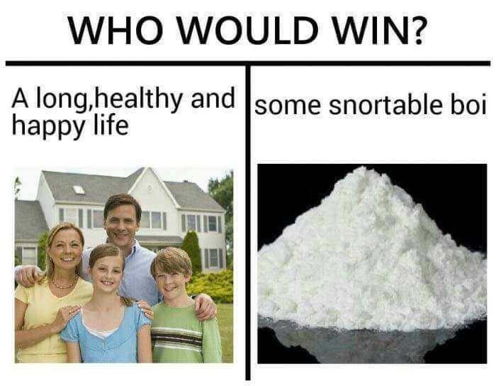 meme - Product - WHO WOULD WIN? A long,healthy and some snortable boi happy life