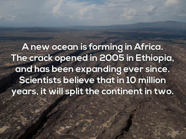 Text - A new ocean is forming in Africa. The crack opened in 2005 in Ethiopia, and has been expanding ever since. Scientists believe that in 10 million years, it will split the continent in two.