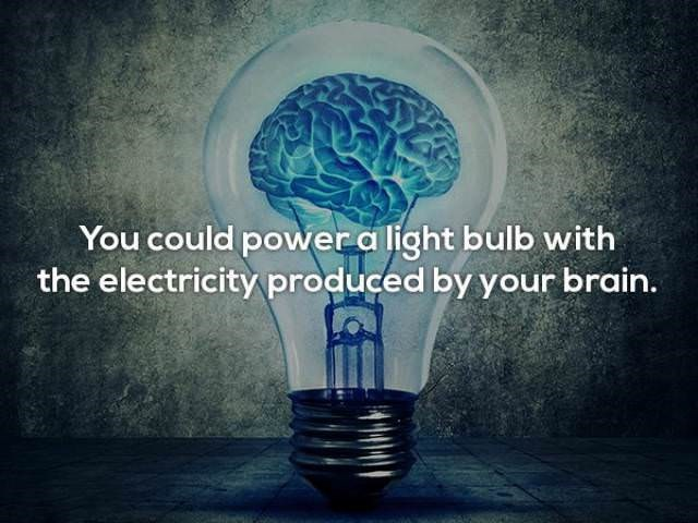 Light - You could power a light bulb with the electricityproduced by your brain.