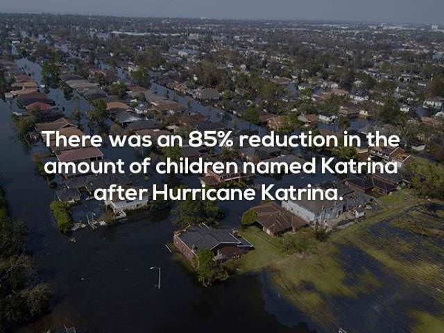 Aerial photography - There was an 85% reduction in the amount of children named Katrina after Hurricane Katrina.