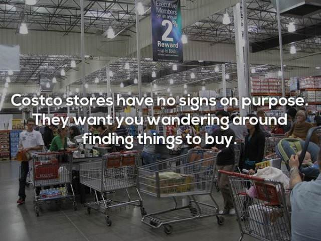 Building - Executive Members t in arqu 2P Reward to 50 Costco stores have no signs on purpose. They want you wandering around finding things to buy.