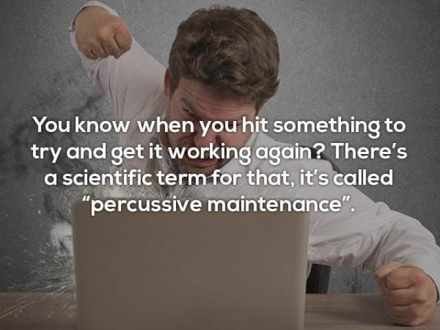 """Text - You know when you hit something to try and get it working again? There's a scientific term for that, it's called """"percussive maintenance""""."""