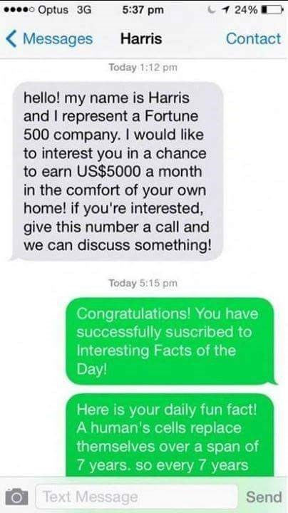 Text - o Optus 3G 1 24% 5:37 pm Messages Harris Contact Today 1:12 pm hello! my name is Harris and I represent a Fortune 500 company. I would like to interest you in a chance to earn US$5000 a month in the comfort of your own home! if you're interested, give this number a call and we can discuss something! Today 5:15 pm Congratulations! You have successfully suscribed to Interesting Facts of the Day! Here is your daily fun fact! A human's cells replace themselves over a span of 7 years. so every