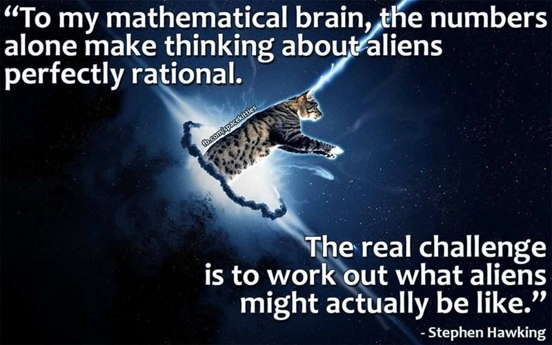 """Text - """"To my mathematical brain, the numbers alone make thinking aboutaliens perfectly rational. fb.com/spacekitties The real challenge is to work out what aliens might actually be like."""" - Stephen Hawking"""