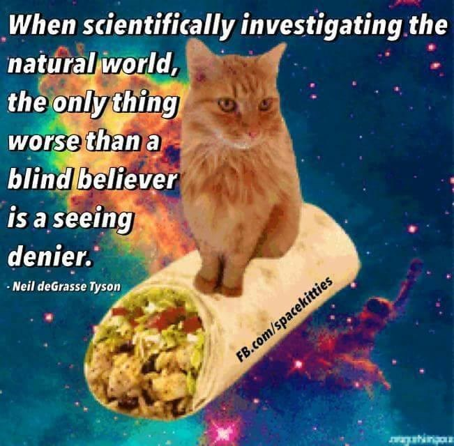 Cat - When scientifically investigating the natural world, the only thing worse than a blind believer is a seeing denier. Neil deGrasse Tyson FB.com/spacekitties