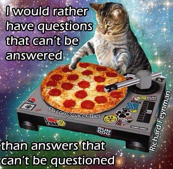 Cat - Owould rather have questions that can't be answered Fb:com/spacekitties RUN DOG than answers that can't be questioned Richard Feynman