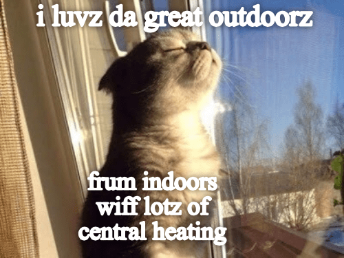 meme - Photo caption - i luvz da great outdoorz frum indoors wiff lotz of central heating