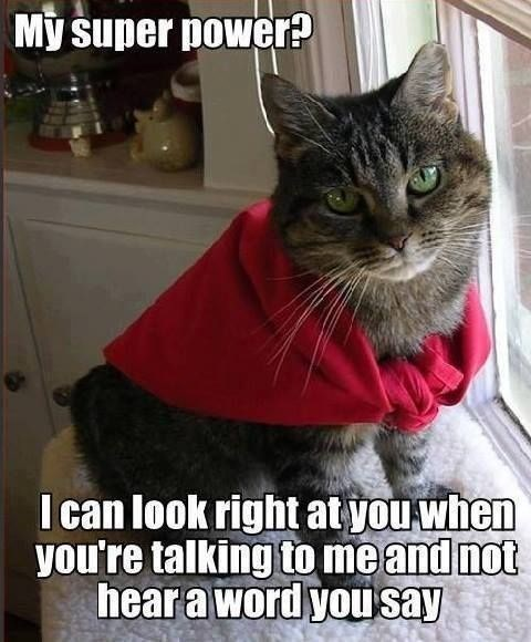 Cat - My super power? I can look right at you when you're talking to me and not hear a word yousay