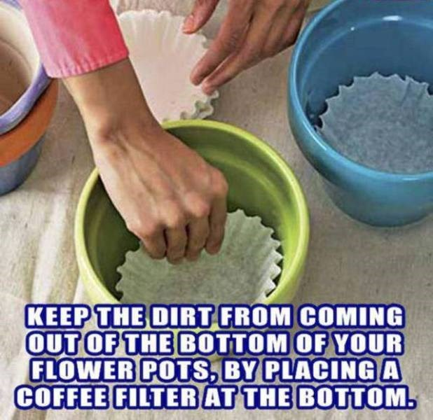 Hand - KEEP THE DIRT FROM COMING OUT OF THE BOTTOM OF YOUR FLOWER POTS, BY PLACING A COFFEE FILTER AT THE BOTTOM.
