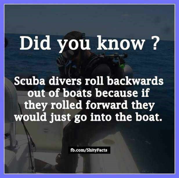 Text - Did you know? Scuba divers roll backwards out of boats because if they rolled forward they would just go into the boat. fb.com/ShityFacts
