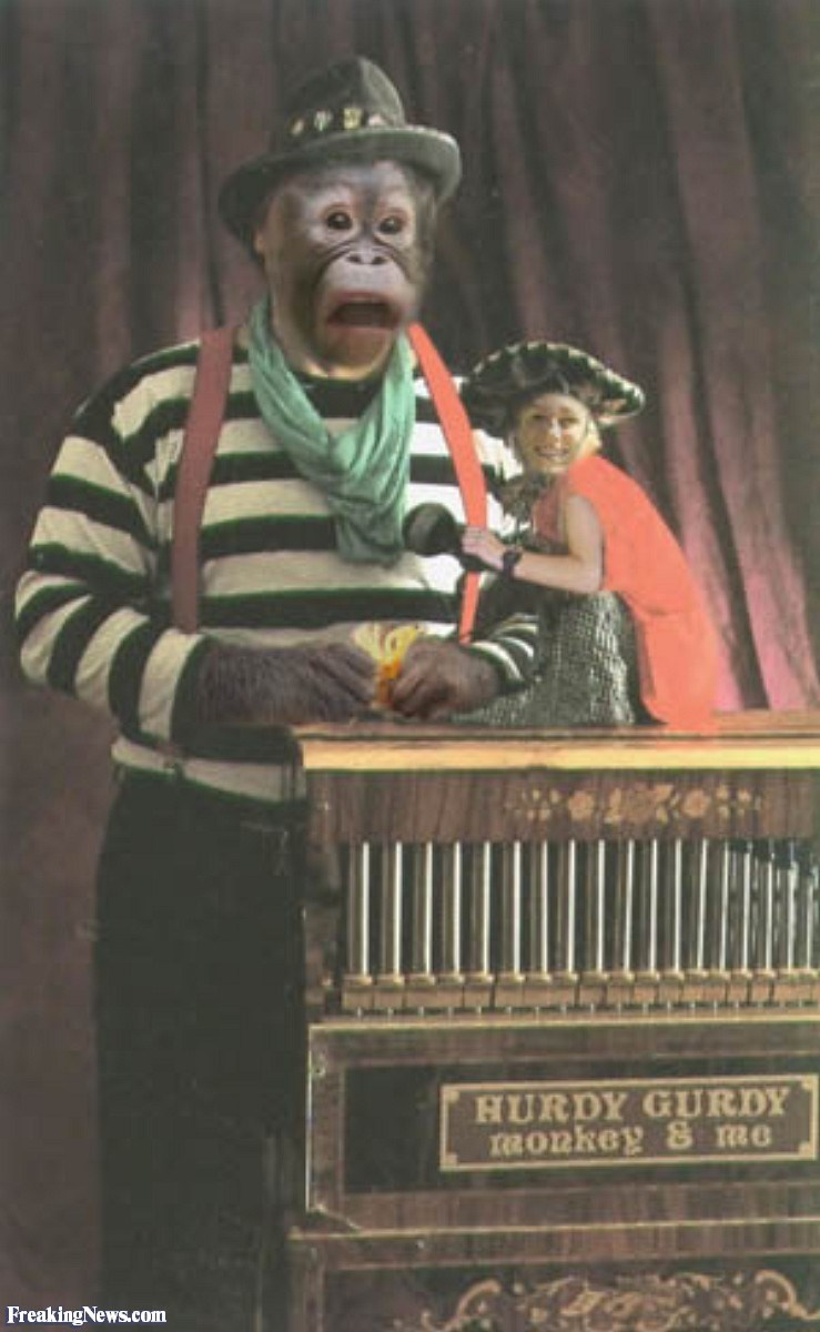 Street organ - HURDY GURDY Ronkey S me FreakingNews.com