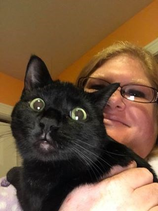 awkward selfies with a cat - Cat
