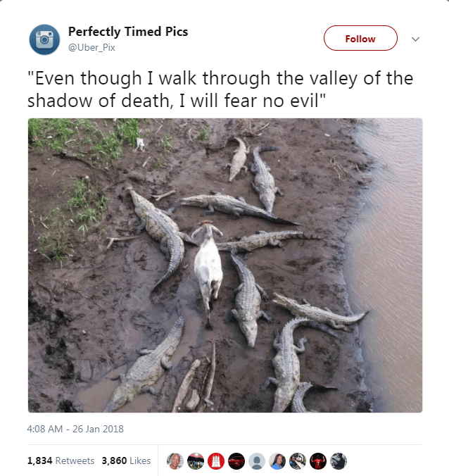 "Text - Perfectly Timed Pics Follow @Uber_Pix ""Even though I walk through the valley of the shadow of death, I will fear no evil"" 4:08 AM - 26 Jan 2018 1,834 Retweets 3,860 Likes"