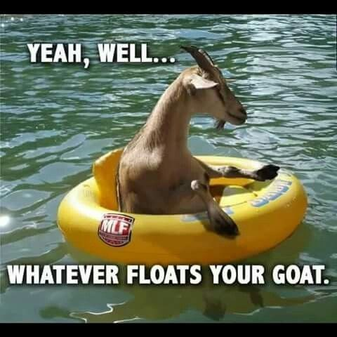 pun - Vehicle - YEAH, WELL... MLF WHATEVER FLOATS YOUR GOAT