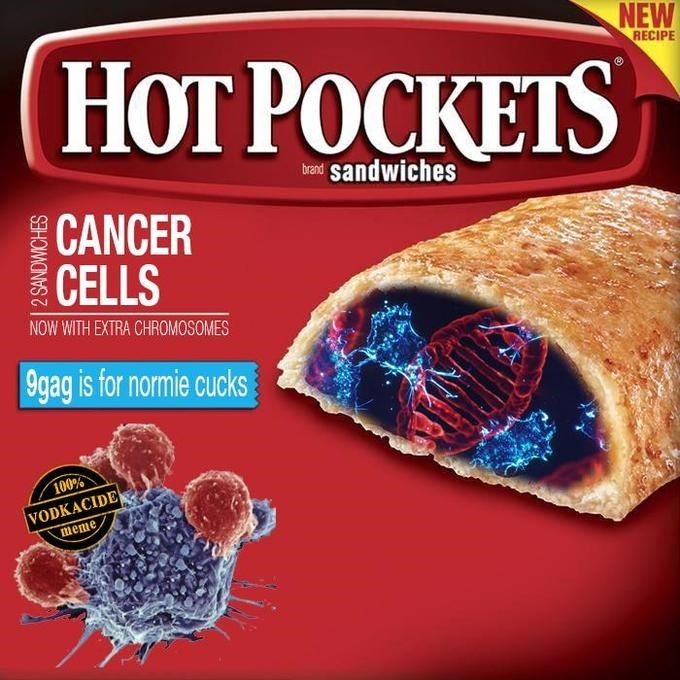 Food - NEW НОT РОСКЕТS RECIPE bo sandwiches CANCER CELLS NOW WITH EXTRA CHROMOSOMES 9gag is for normie cucks 100% VODKACIDE meme 2 SANDWICHES