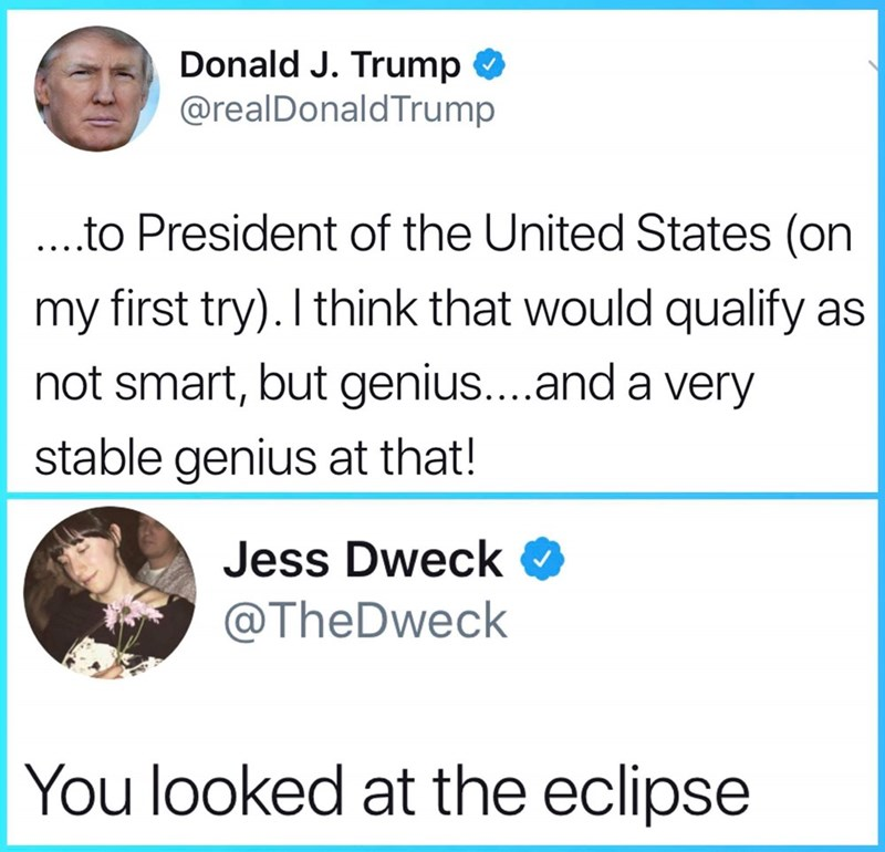 Text - Donald J. Trump @realDonaldTrump ...to President of the United States (on my first try). I think that would qualify as not smart, but genius....and a very stable genius at that! Jess Dweck @TheDweck You looked at the eclipse