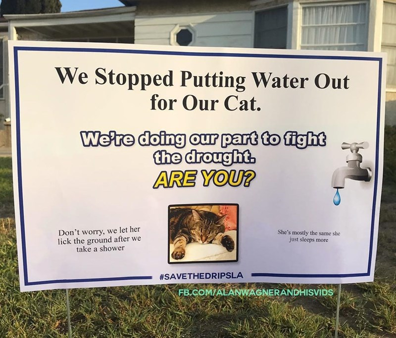 Signage - We Stopped Putting Water Out for Our Cat. We're doing our part to fight the drought. ARE YOU? Don't worry, we let her lick the ground after we take a shower She's mostly the same she just sleeps more #SAVETHEDRIPSLA FB.COM/ALANWAGNERANDHISVIDS